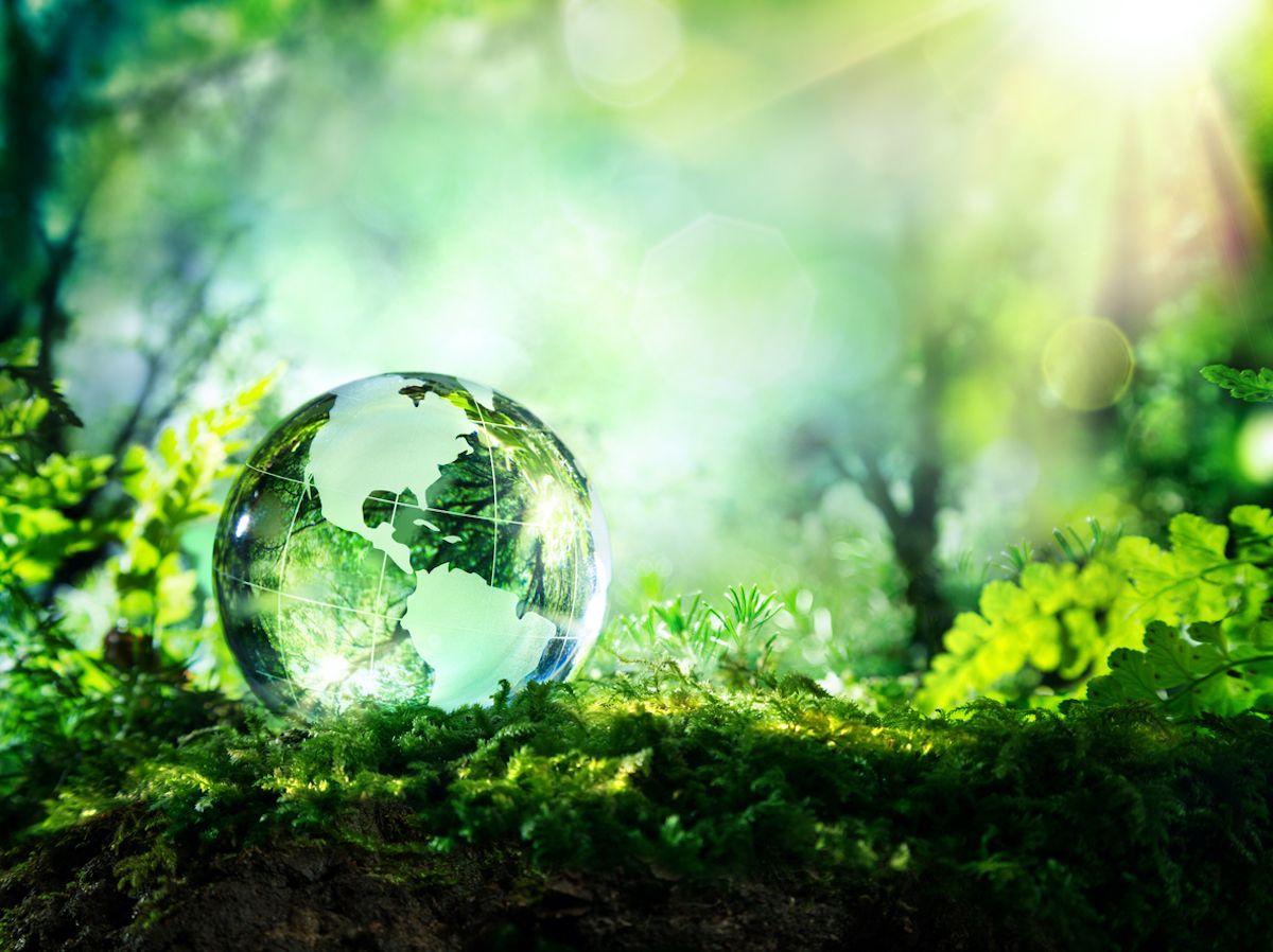 Conmemoración del Dia de la tierra 2021